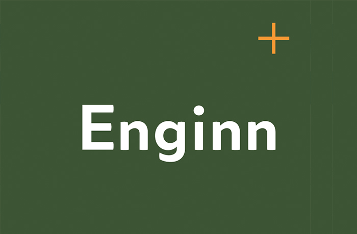Enginn